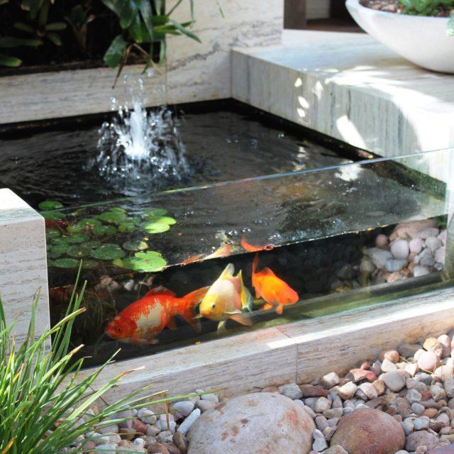 Kolam Ikan Kaca Minimalis